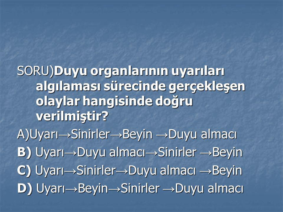 SORU)Duyu organlarının uyarıları algılaması sürecinde gerçekleşen olaylar hangisinde doğru verilmiştir? A)Uyarı → Sinirler → Beyin → Duyu almacı B) Uy
