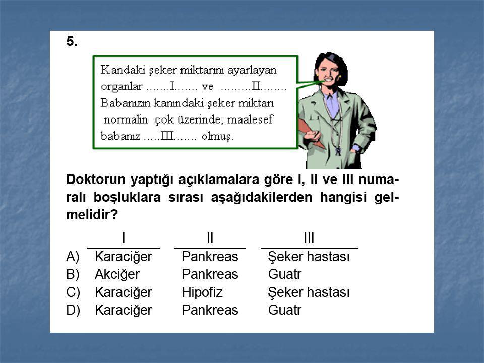 A)I-kara biber B)II-limon C)III-elma D)IV-baklava