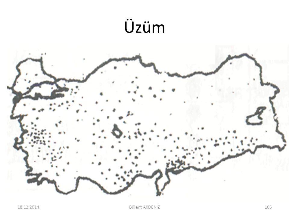 Üzüm 18.12.2014105Bülent AKDENİZ