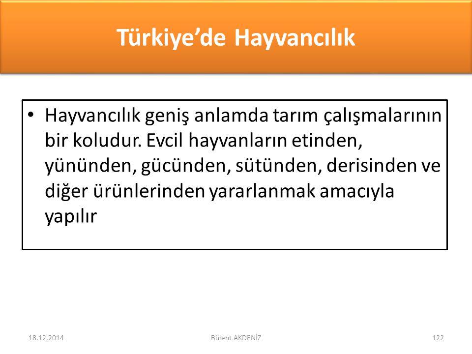 Türkiye'de Hayvancılık Hayvancılık geniş anlamda tarım çalışmalarının bir koludur. Evcil hayvanların etinden, yününden, gücünden, sütünden, derisinden