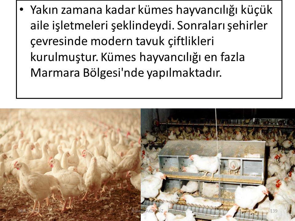 Yakın zamana kadar kümes hayvancılığı küçük aile işletmeleri şeklindeydi. Sonraları şehirler çevresinde modern tavuk çiftlikleri kurulmuştur. Kümes ha