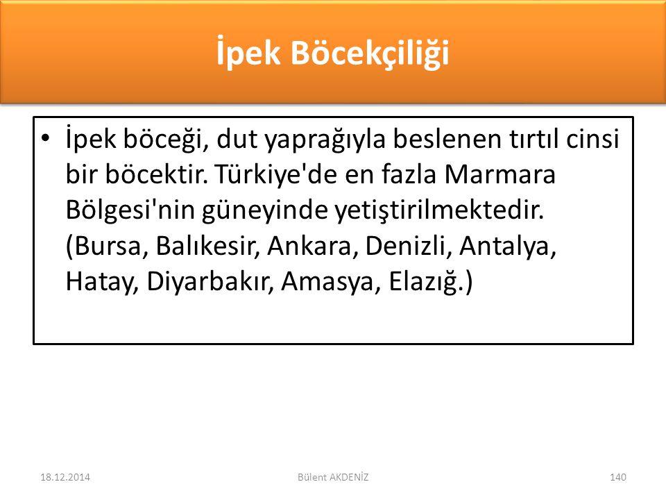 İpek Böcekçiliği İpek böceği, dut yaprağıyla beslenen tırtıl cinsi bir böcektir. Türkiye'de en fazla Marmara Bölgesi'nin güneyinde yetiştirilmektedir.