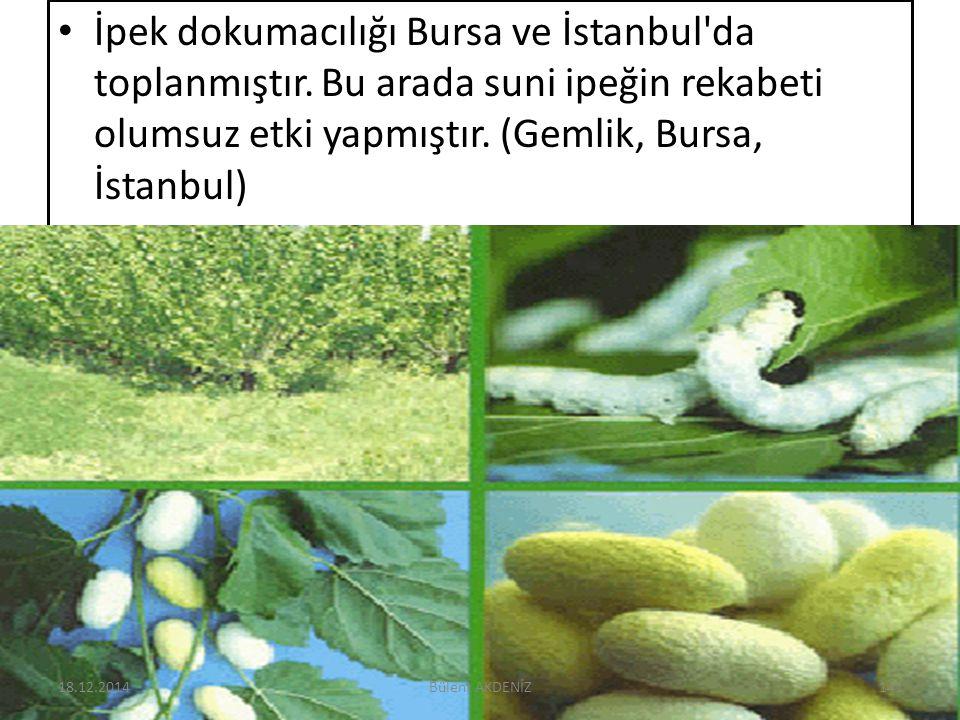 İpek dokumacılığı Bursa ve İstanbul'da toplanmıştır. Bu arada suni ipeğin rekabeti olumsuz etki yapmıştır. (Gemlik, Bursa, İstanbul) 18.12.2014141Büle