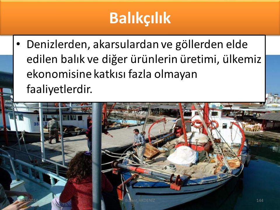 Balıkçılık Denizlerden, akarsulardan ve göllerden elde edilen balık ve diğer ürünlerin üretimi, ülkemiz ekonomisine katkısı fazla olmayan faaliyetlerd