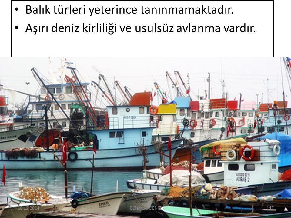 Balık türleri yeterince tanınmamaktadır. Aşırı deniz kirliliği ve usulsüz avlanma vardır. 18.12.2014147Bülent AKDENİZ