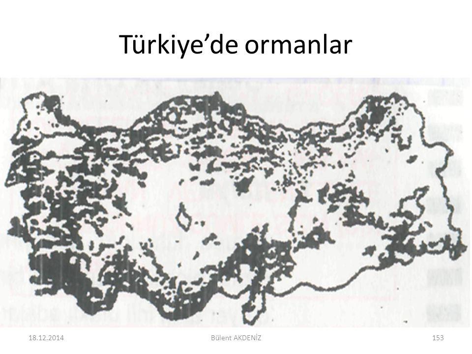 Türkiye'de ormanlar 18.12.2014153Bülent AKDENİZ