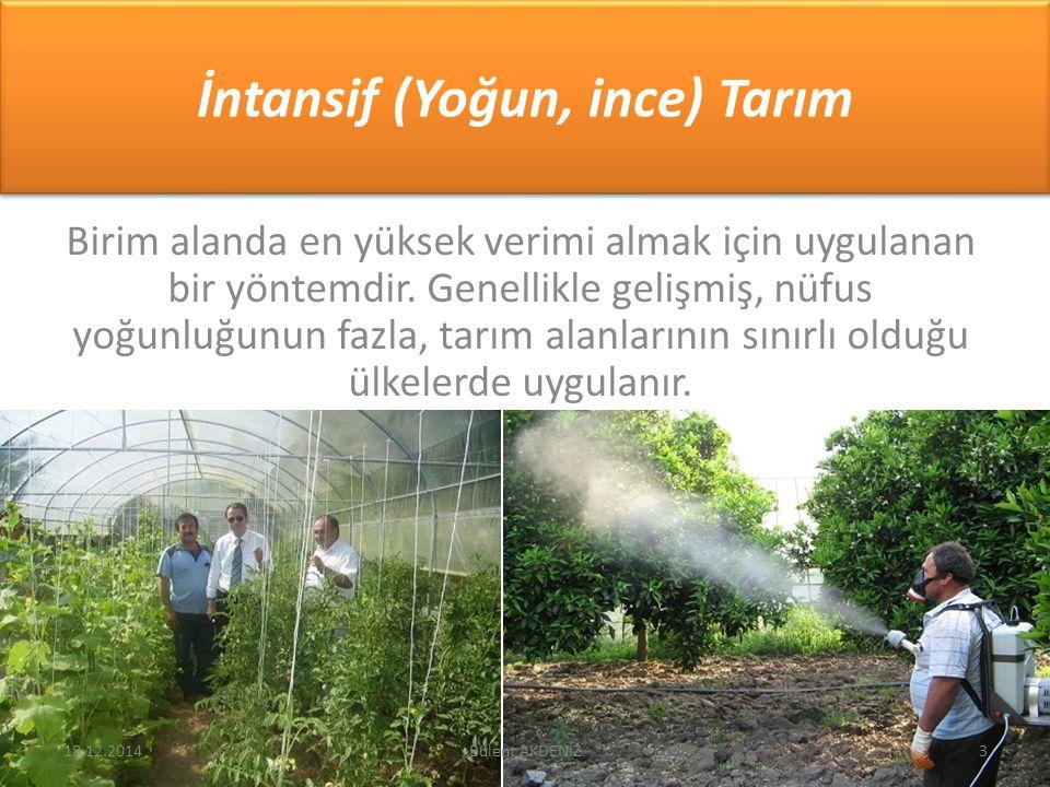 İntansif (Yoğun, ince) Tarım Birim alanda en yüksek verimi almak için uygulanan bir yöntemdir. Genellikle gelişmiş, nüfus yoğunluğunun fazla, tarım al