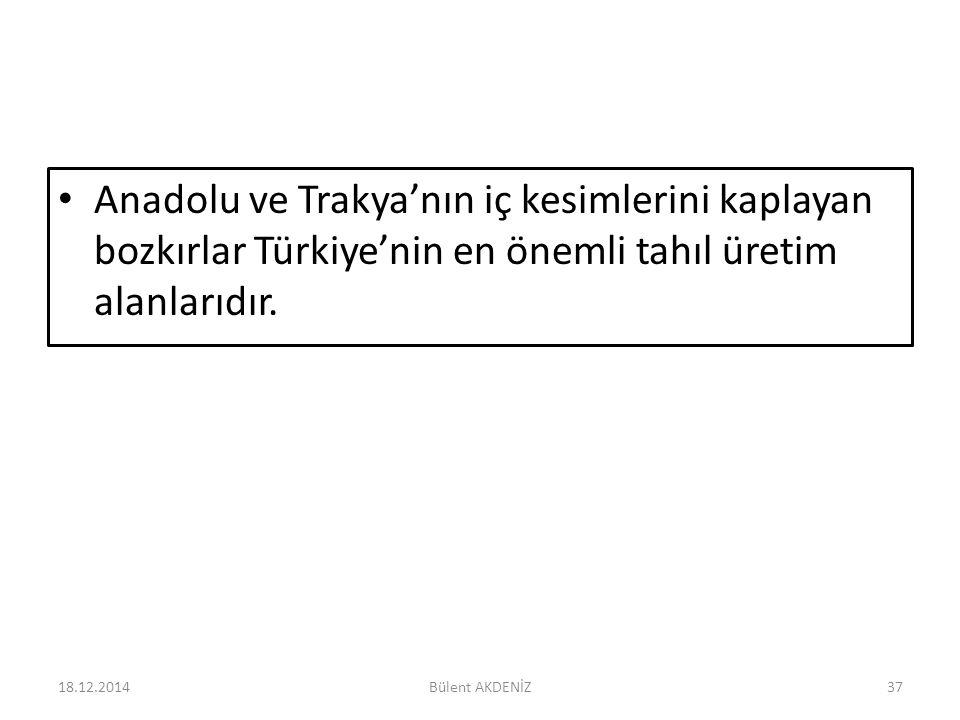 Anadolu ve Trakya'nın iç kesimlerini kaplayan bozkırlar Türkiye'nin en önemli tahıl üretim alanlarıdır. 18.12.201437Bülent AKDENİZ