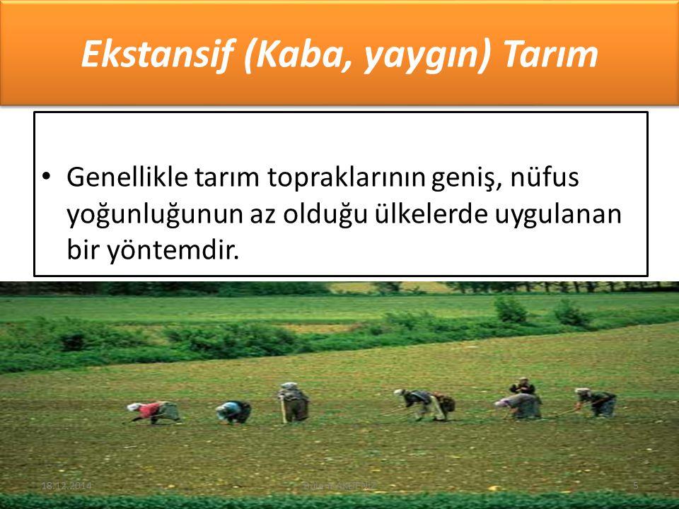 Ekstansif (Kaba, yaygın) Tarım Genellikle tarım topraklarının geniş, nüfus yoğunluğunun az olduğu ülkelerde uygulanan bir yöntemdir. 18.12.20145Bülent