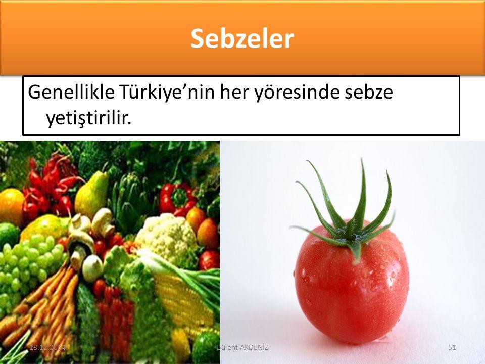 Sebzeler Genellikle Türkiye'nin her yöresinde sebze yetiştirilir. 18.12.201451Bülent AKDENİZ