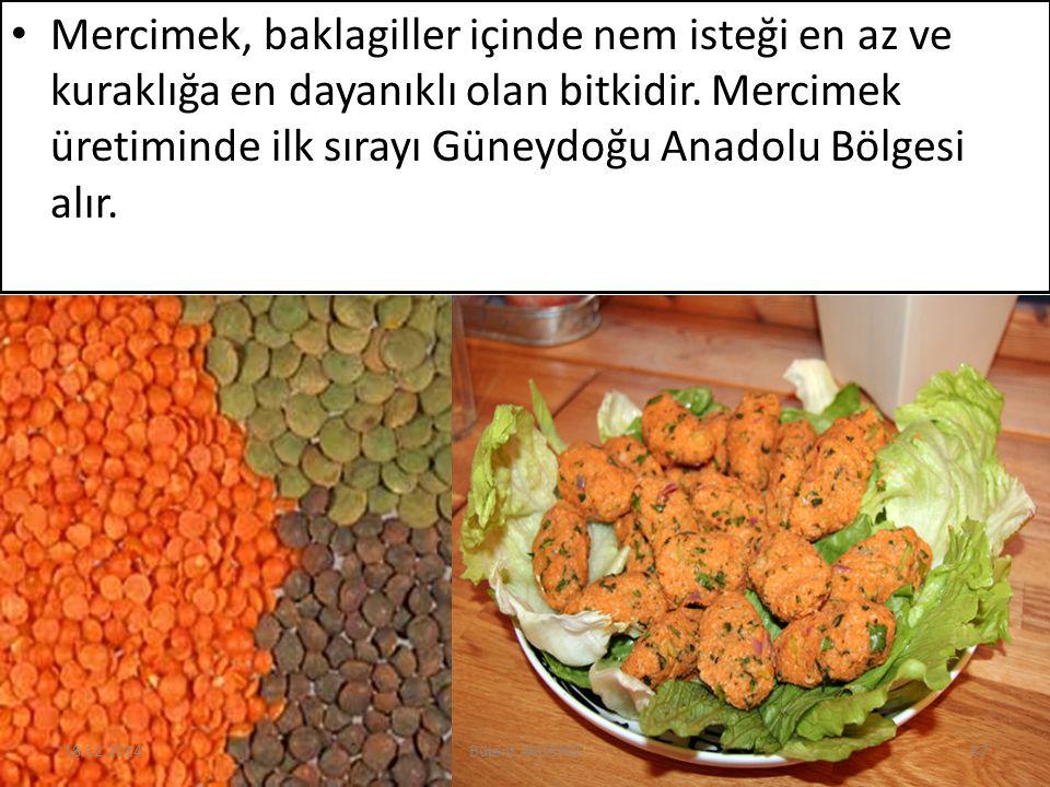 Mercimek, baklagiller içinde nem isteği en az ve kuraklığa en dayanıklı olan bitkidir. Mercimek üretiminde ilk sırayı Güneydoğu Anadolu Bölgesi alır.
