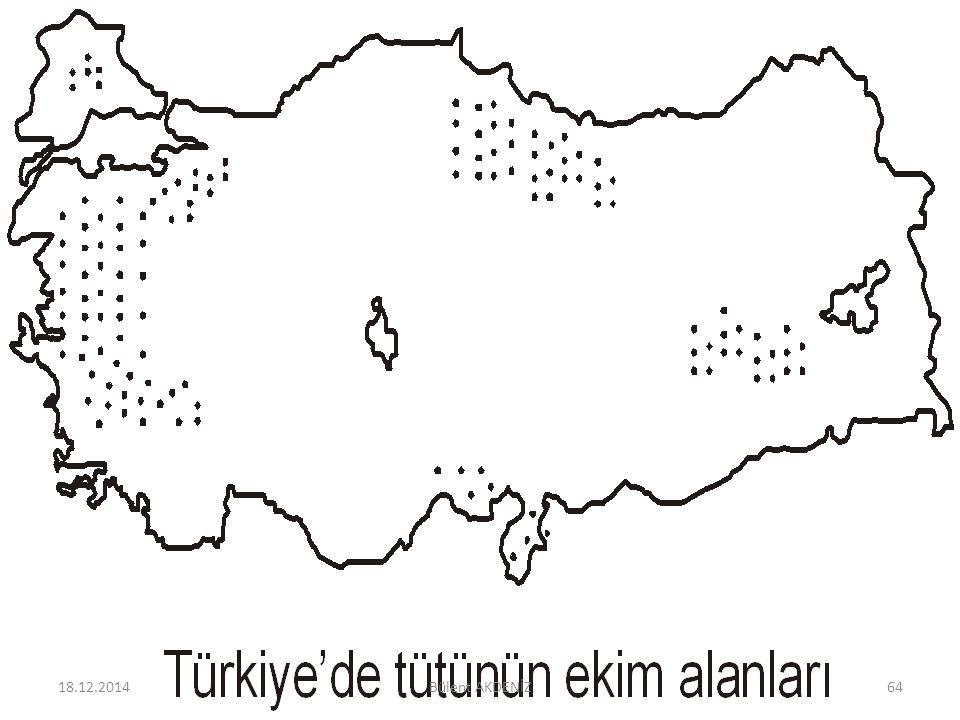 18.12.201464Bülent AKDENİZ