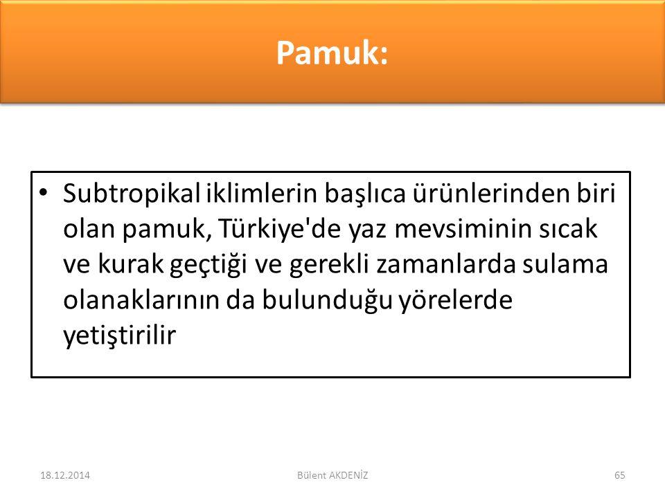 Pamuk: Subtropikal iklimlerin başlıca ürünlerinden biri olan pamuk, Türkiye'de yaz mevsiminin sıcak ve kurak geçtiği ve gerekli zamanlarda sulama olan