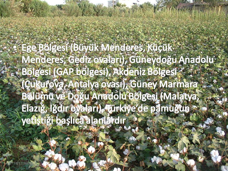 18.12.201467Bülent AKDENİZ