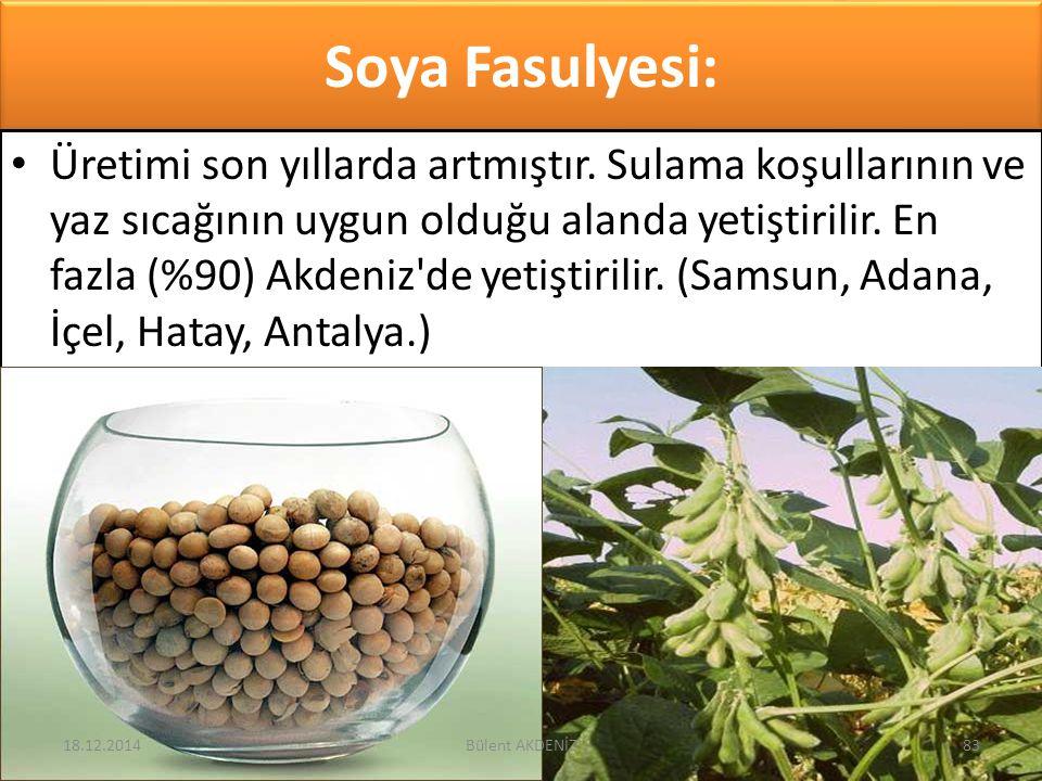 Soya Fasulyesi: Üretimi son yıllarda artmıştır. Sulama koşullarının ve yaz sıcağının uygun olduğu alanda yetiştirilir. En fazla (%90) Akdeniz'de yetiş