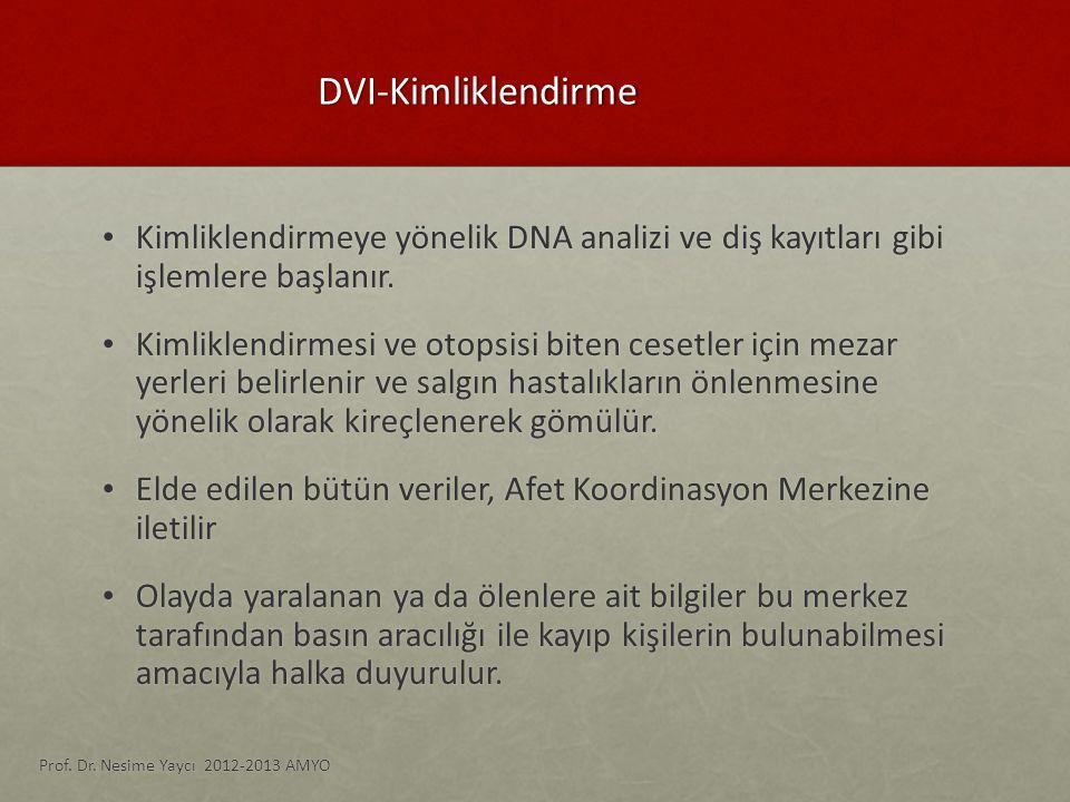 DVI-Kimliklendirme Kimliklendirmeye yönelik DNA analizi ve diş kayıtları gibi işlemlere başlanır. Kimliklendirmeye yönelik DNA analizi ve diş kayıtlar