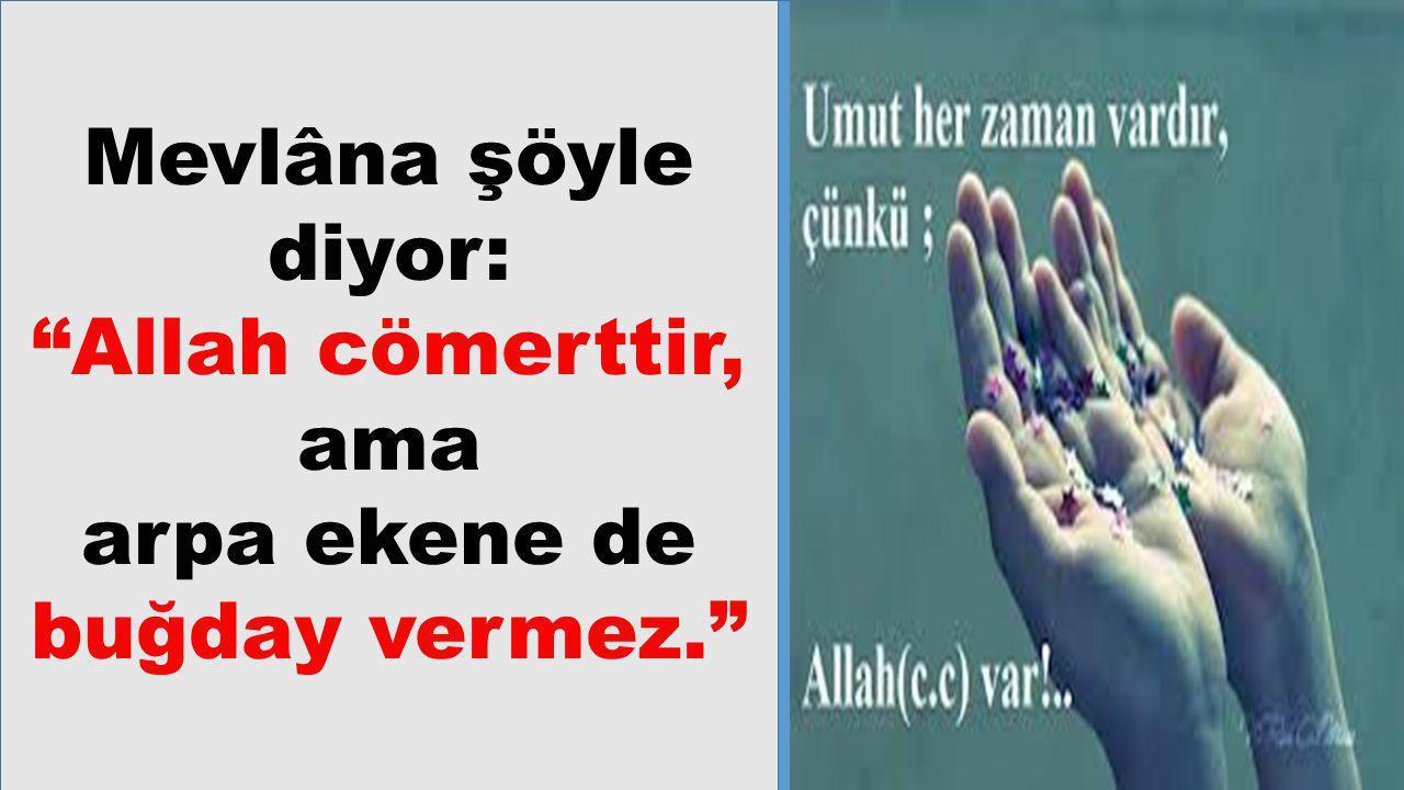 """Mevlâna şöyle diyor: """"Allah cömerttir, ama arpa ekene de buğday vermez."""""""
