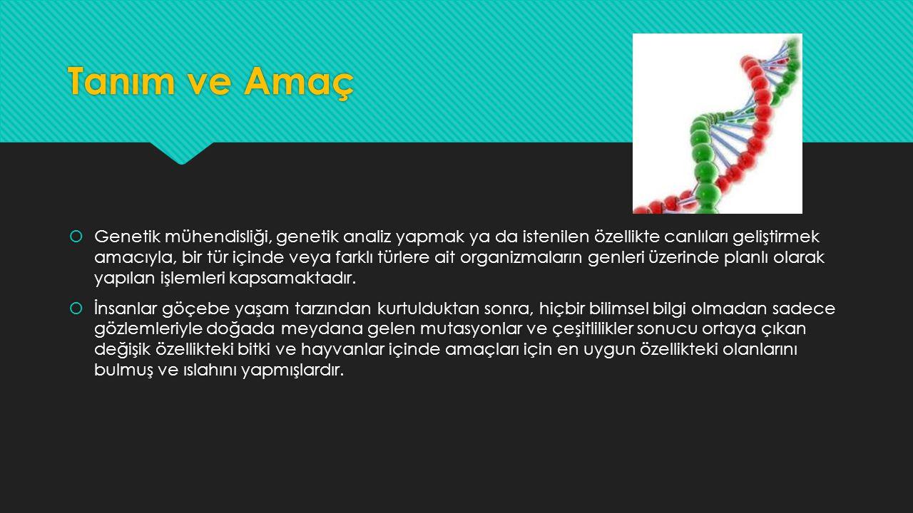Tanım ve Amaç  Genetik mühendisliği, genetik analiz yapmak ya da istenilen özellikte canlıları geliştirmek amacıyla, bir tür içinde veya farklı türle