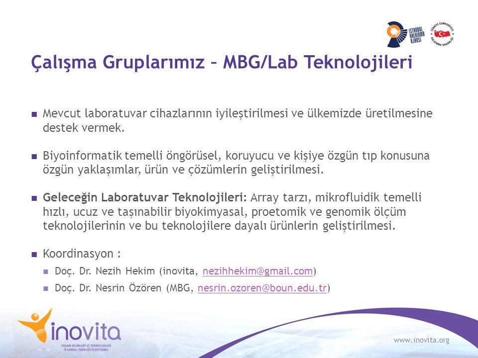 www.inovita.org Çalışma Gruplarımız – MBG/Lab Teknolojileri Mevcut laboratuvar cihazlarının iyileştirilmesi ve ülkemizde üretilmesine destek vermek. B