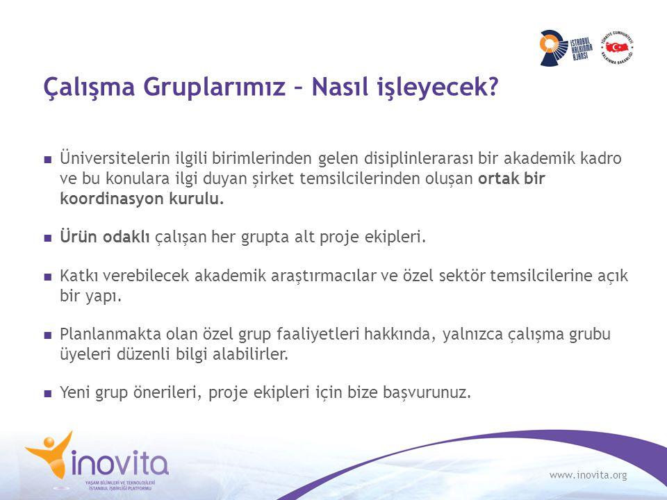 www.inovita.org Çalışma Gruplarımız – Nasıl işleyecek? Üniversitelerin ilgili birimlerinden gelen disiplinlerarası bir akademik kadro ve bu konulara i