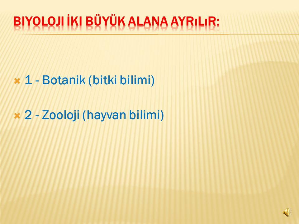  1 - Botanik (bitki bilimi)  2 - Zooloji (hayvan bilimi)