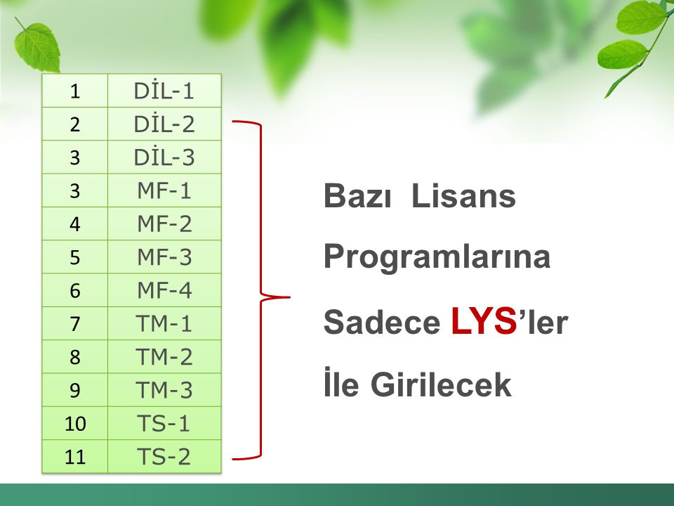Bazı Lisans Programlarına Sadece LYS 'ler İle Girilecek