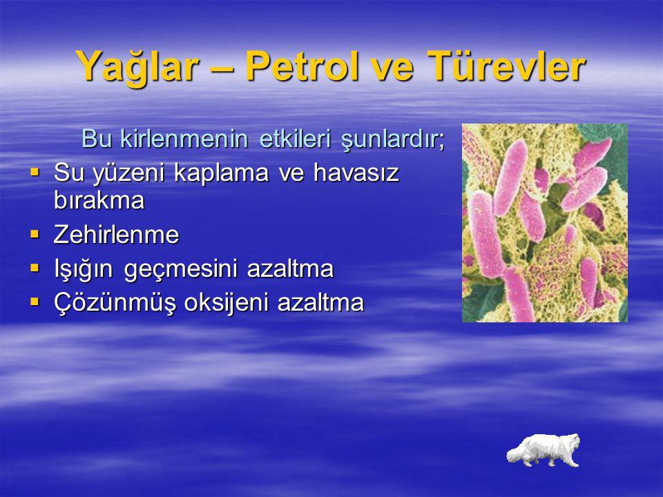 Yağlar – Petrol ve Türevler Bu kirlenmenin etkileri şunlardır;  Su yüzeni kaplama ve havasız bırakma  Zehirlenme  Işığın geçmesini azaltma  Çözünm