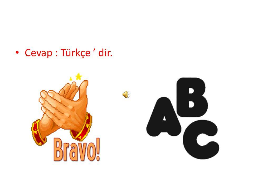 Cevap : Türkçe ' dir.