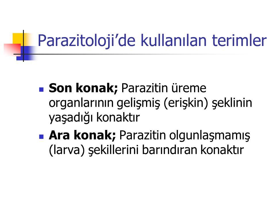 Parazitoloji'de kullanılan terimler Son konak; Parazitin üreme organlarının gelişmiş (erişkin) şeklinin yaşadığı konaktır Ara konak; Parazitin olgunla