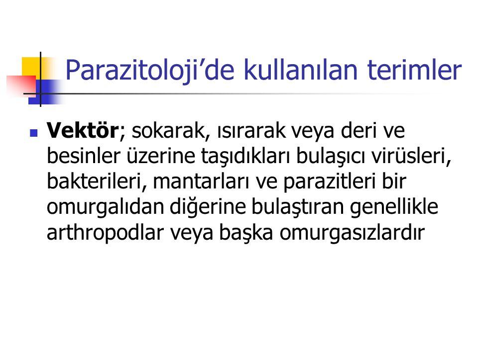 Parazitoloji'de kullanılan terimler Vektör; sokarak, ısırarak veya deri ve besinler üzerine taşıdıkları bulaşıcı virüsleri, bakterileri, mantarları ve