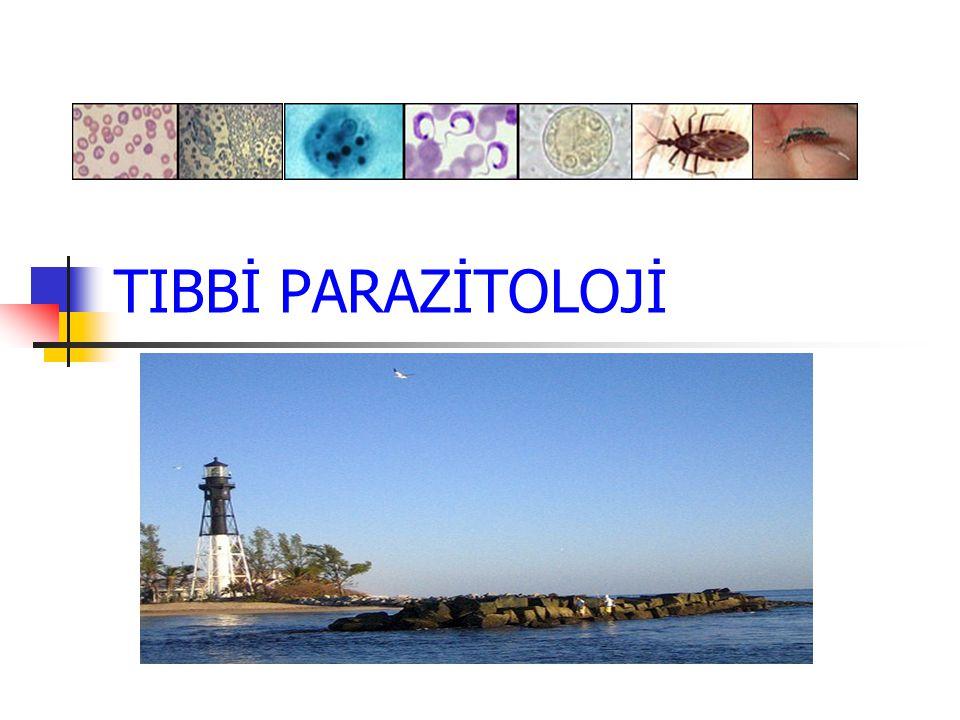 PARAZİTOLOJİ Yunancadan gelen parazit terim orijinal olarak; başka birinin sofrasından yiyen anlamdadır Parazitler, doğada serbest yaşayan organizmalardan daha çoktur