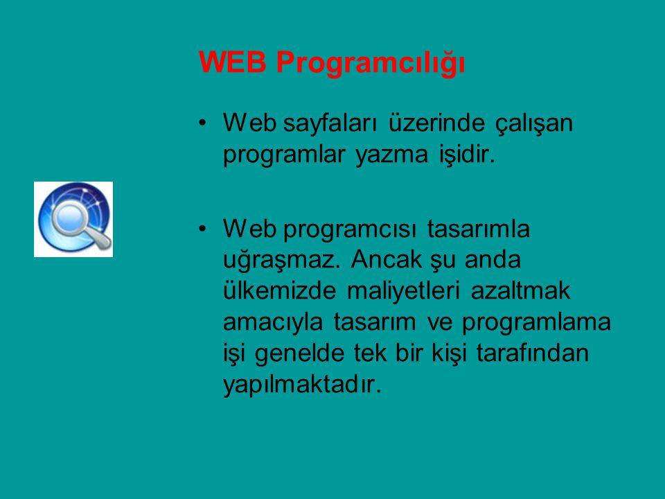Web sayfaları üzerinde çalışan programlar yazma işidir. Web programcısı tasarımla uğraşmaz. Ancak şu anda ülkemizde maliyetleri azaltmak amacıyla tasa