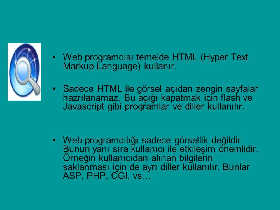 Web programcısı temelde HTML (Hyper Text Markup Language) kullanır. Sadece HTML ile görsel açıdan zengin sayfalar hazrılanamaz. Bu açığı kapatmak için