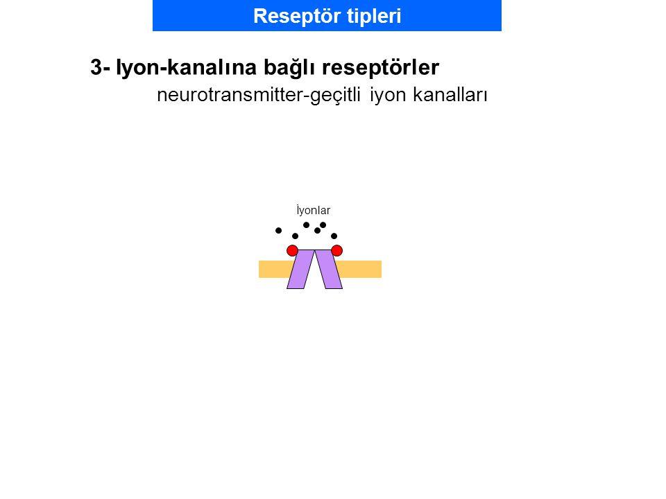 3- Iyon-kanalına bağlı reseptörler neurotransmitter-geçitli iyon kanalları İyonlar Reseptör tipleri