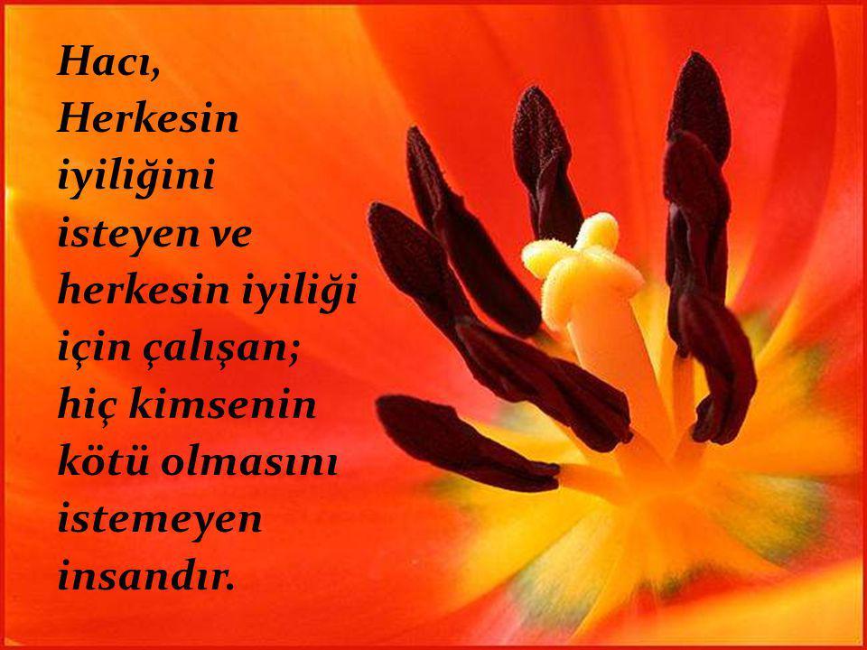 Hacı, Herkesin iyiliğini isteyen ve herkesin iyiliği için çalışan; hiç kimsenin kötü olmasını istemeyen insandır.
