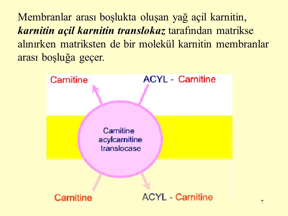 7 Membranlar arası boşlukta oluşan yağ açil karnitin, karnitin açil karnitin translokaz tarafından matrikse alınırken matriksten de bir molekül karnit