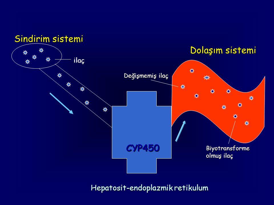 Sindirim sistemi CYP450 ilaç Dolaşım sistemi Biyotransforme olmuş ilaç Değişmemiş ilaç Hepatosit-endoplazmik retikulum