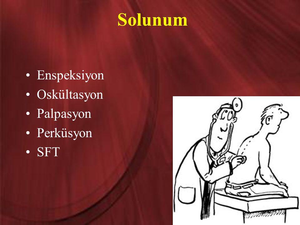 Solunum Enspeksiyon Oskültasyon Palpasyon Perküsyon SFT