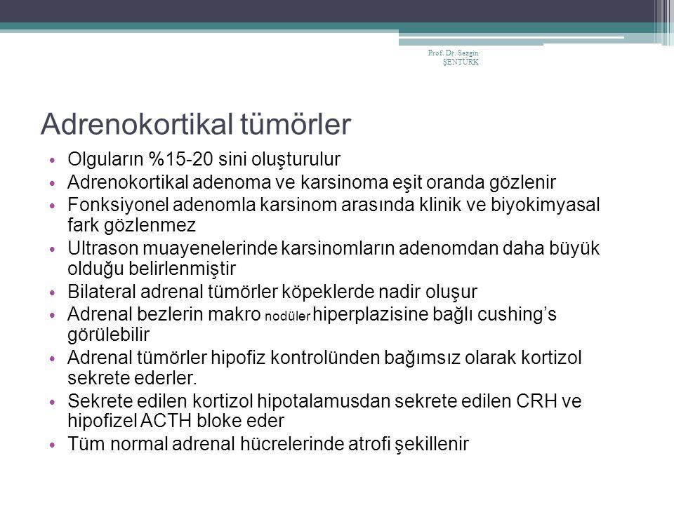 Prof. Dr. Sezgin ŞENTÜRK Adrenokortikal tümörler Olguların %15-20 sini oluşturulur Adrenokortikal adenoma ve karsinoma eşit oranda gözlenir Fonksiyone