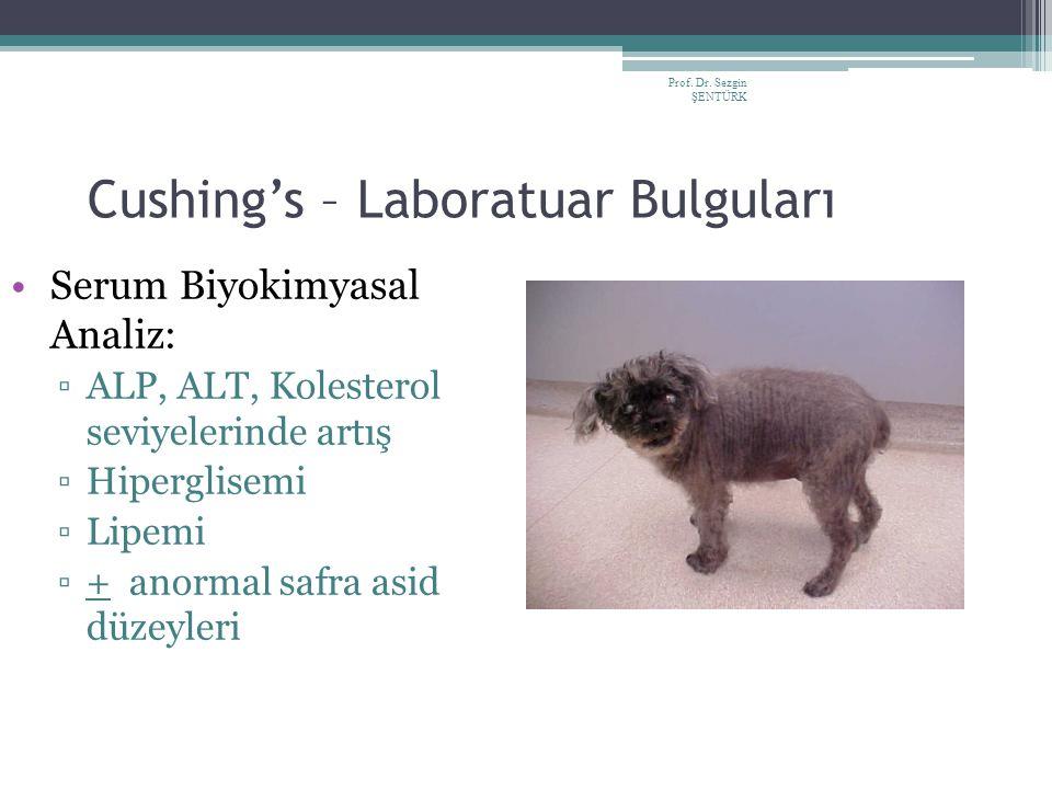 Prof. Dr. Sezgin ŞENTÜRK Cushing's – Laboratuar Bulguları Serum Biyokimyasal Analiz: ▫ALP, ALT, Kolesterol seviyelerinde artış ▫Hiperglisemi ▫Lipemi ▫