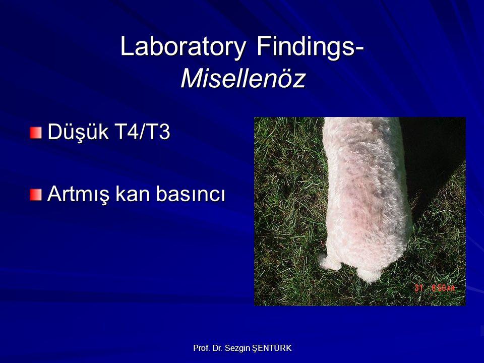 Prof. Dr. Sezgin ŞENTÜRK Laboratory Findings- Misellenöz Düşük T4/T3 Artmış kan basıncı