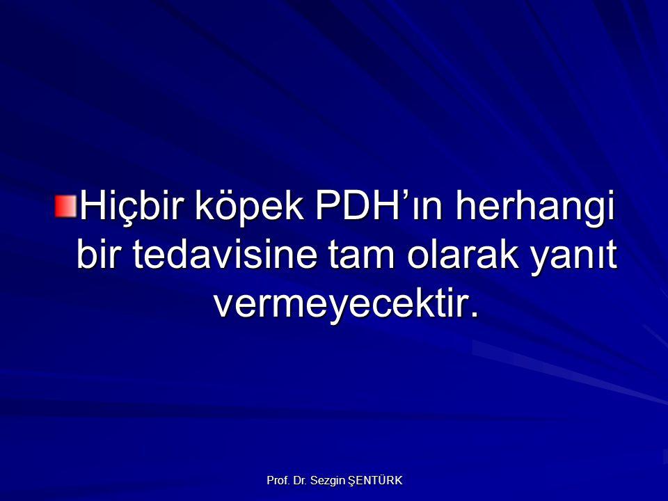 Prof. Dr. Sezgin ŞENTÜRK Hiçbir köpek PDH'ın herhangi bir tedavisine tam olarak yanıt vermeyecektir.