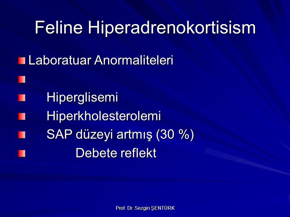 Feline Hiperadrenokortisism Laboratuar Anormaliteleri Hiperglisemi Hiperkholesterolemi SAP düzeyi artmış (30 %) Debete reflekt