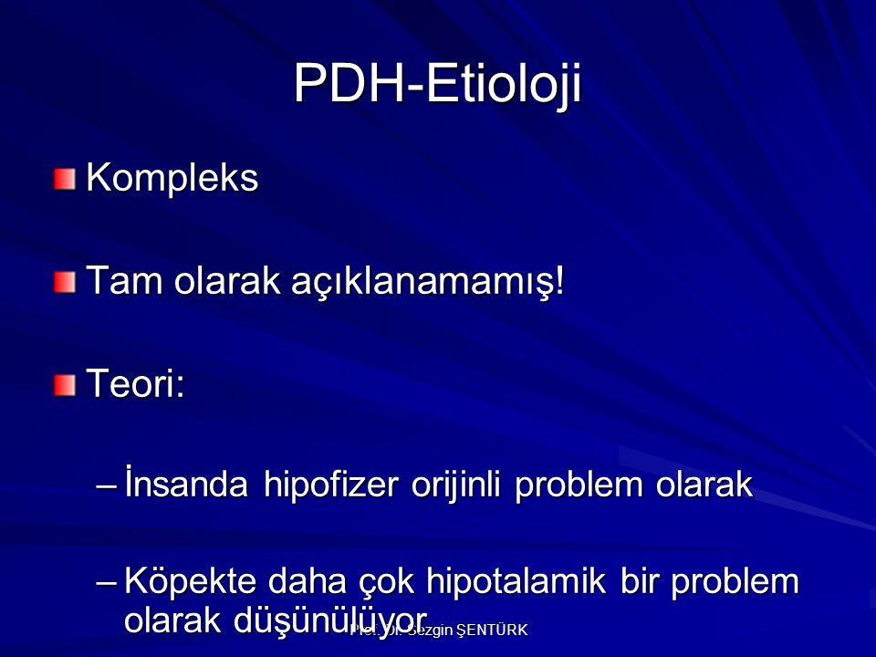 Prof. Dr. Sezgin ŞENTÜRK PDH-Etioloji Kompleks Tam olarak açıklanamamış! Teori: –İnsanda hipofizer orijinli problem olarak –Köpekte daha çok hipotalam