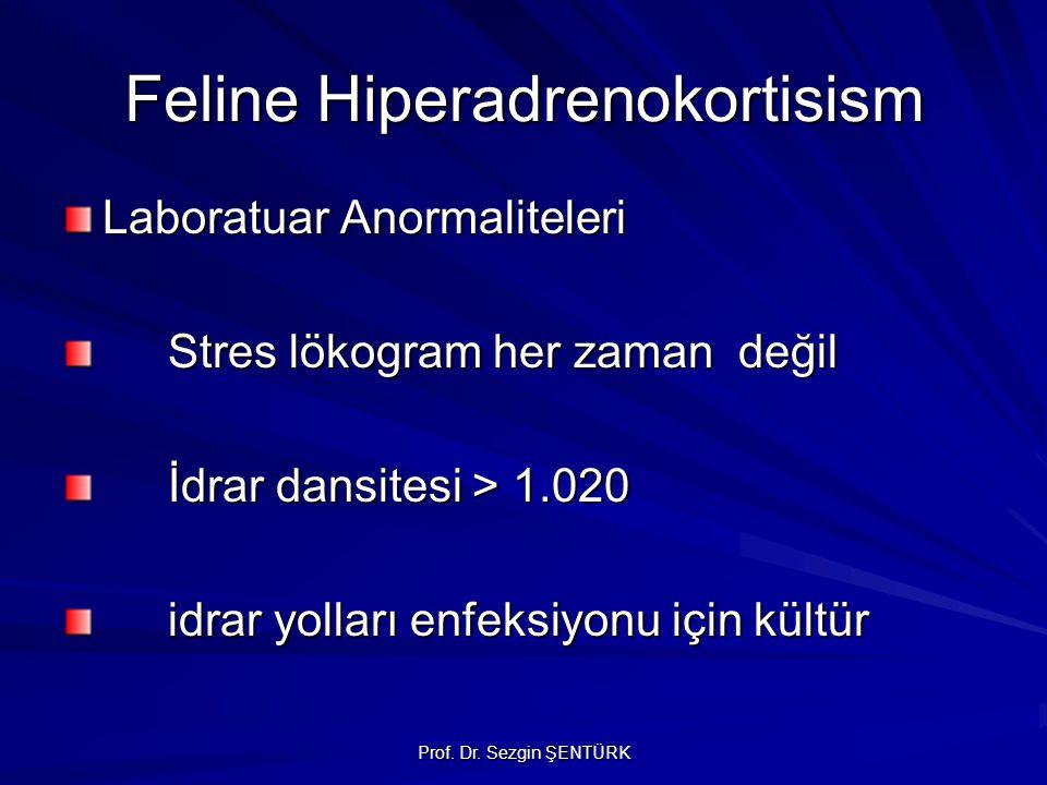 Prof. Dr. Sezgin ŞENTÜRK Feline Hiperadrenokortisism Laboratuar Anormaliteleri Stres lökogram her zaman değil İdrar dansitesi > 1.020 idrar yolları en