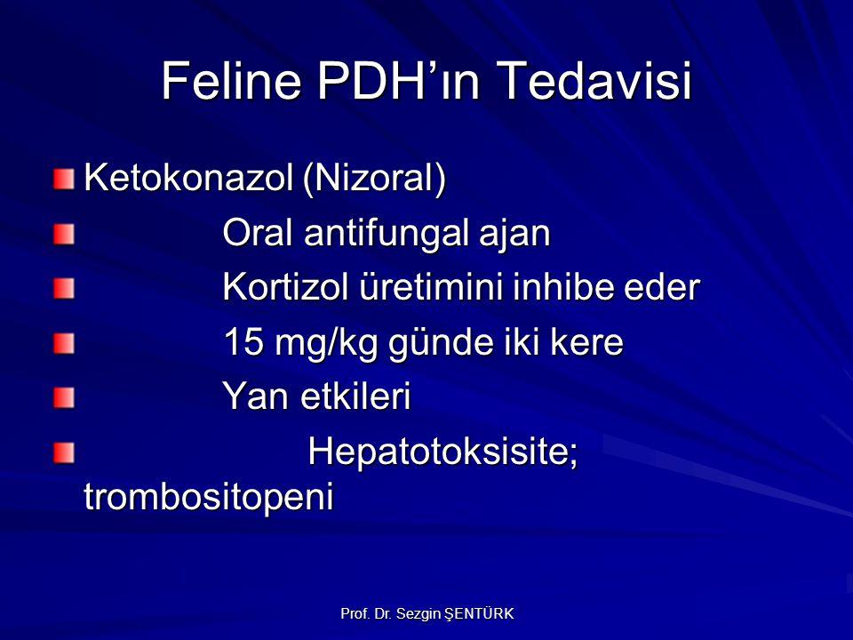 Prof. Dr. Sezgin ŞENTÜRK Feline PDH'ın Tedavisi Ketokonazol (Nizoral) Oral antifungal ajan Kortizol üretimini inhibe eder 15 mg/kg günde iki kere Yan