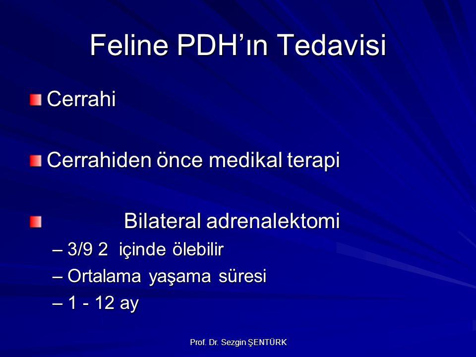 Prof. Dr. Sezgin ŞENTÜRK Feline PDH'ın Tedavisi Cerrahi Cerrahiden önce medikal terapi Bilateral adrenalektomi –3/9 2 içinde ölebilir –Ortalama yaşama