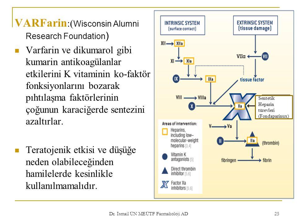 Dr. İsmail ÜN MEÜTF Farmakoloji AD 25 VARFarin :( Wisconsin Alumni Research Foundation ) Varfarin ve dikumarol gibi kumarin antikoagülanlar etkilerini
