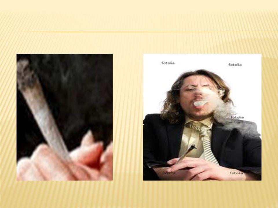  4-) Ağızdan alma: Bu yolla alınan kokain sindirim sistemi tarafından ayrıştırılır ve etkisiz hale gelir.