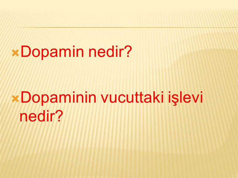  Dopamin nedir?  Dopaminin vucuttaki işlevi nedir?
